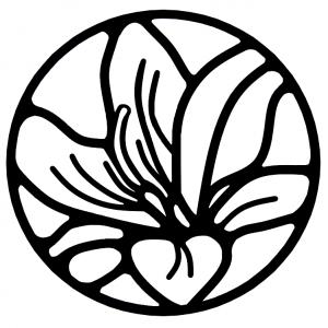 Hoitola Lilium
